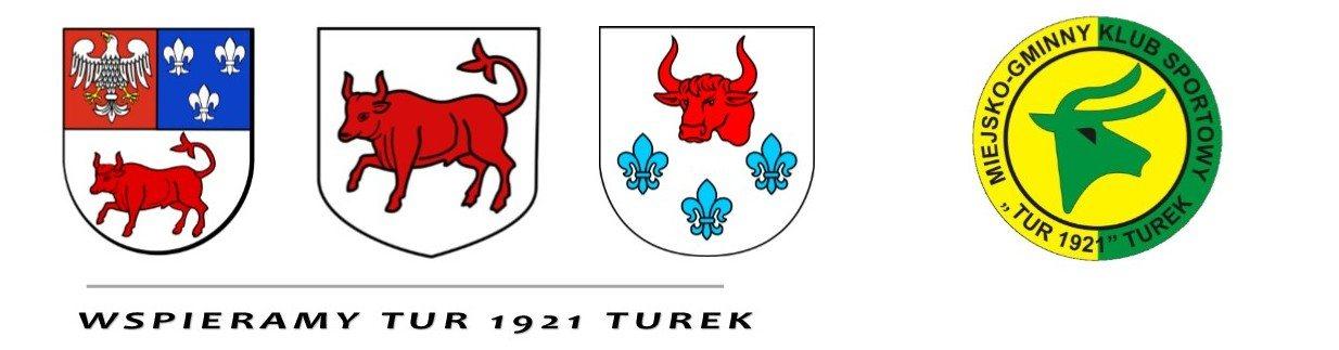 powiat-miasto-gmina0